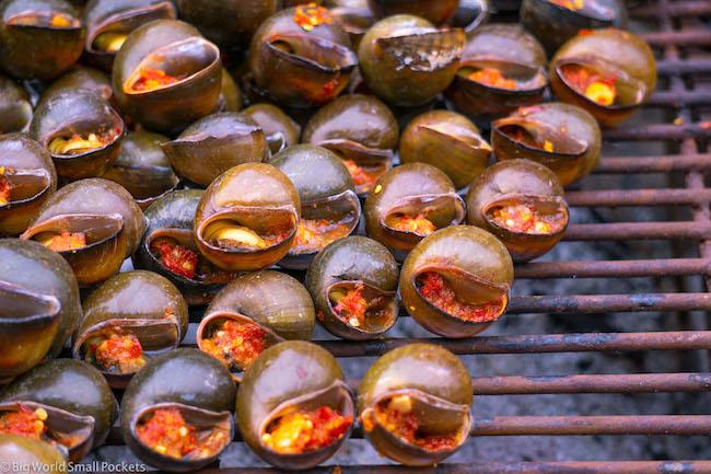 Cambodia, Battambang, Snails