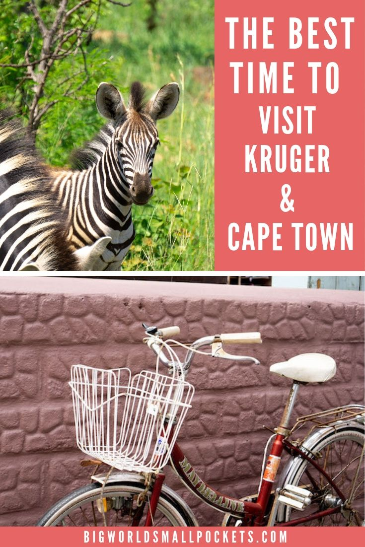 The Best Time to Visit Kruger & Cape Town in South Africa {Big World Small Pockets}