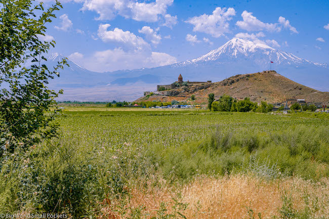 Armenia, Khor Virab, View