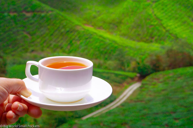 Cameron Highlands, BOH, Tea Cup