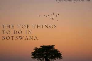 The Top Things to Do in Botswana