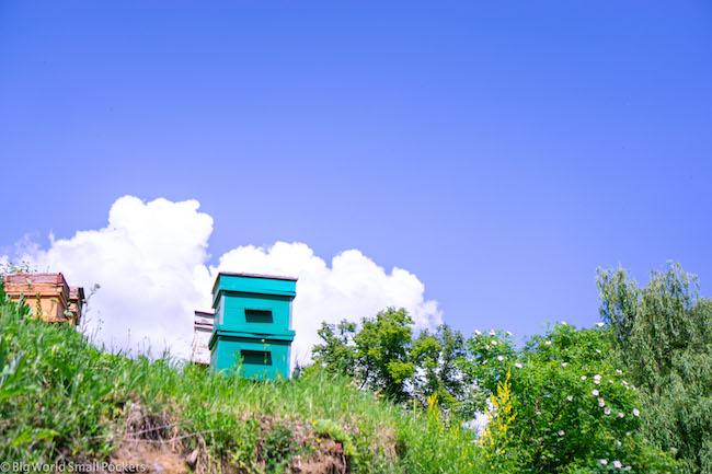 Armenia, Dilijan, Hives