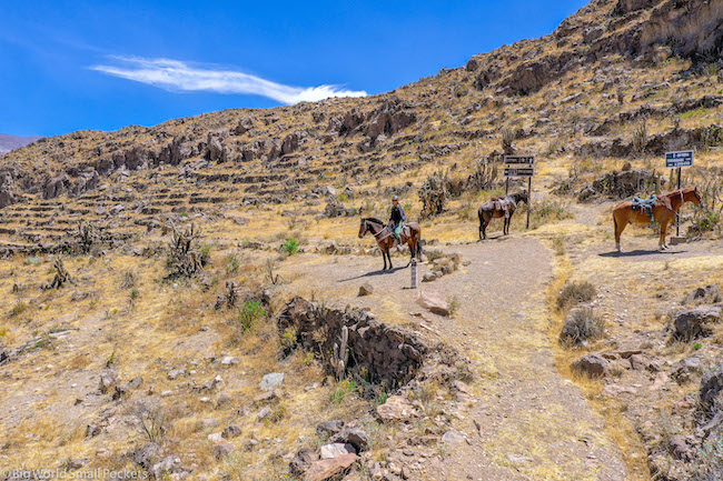 Peru, Colca Canyon Tour, Horse Riding