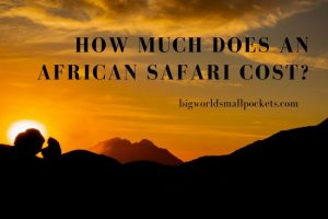 How Much Does an African Safari Cost?