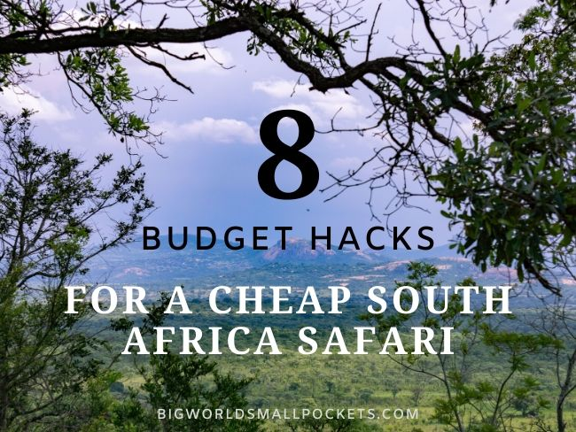 8 Tips for a Budget South Africa Safari