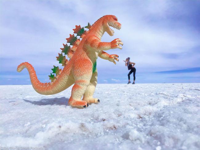 Bolivia, Uyuni Tour, Dinosaur Shot