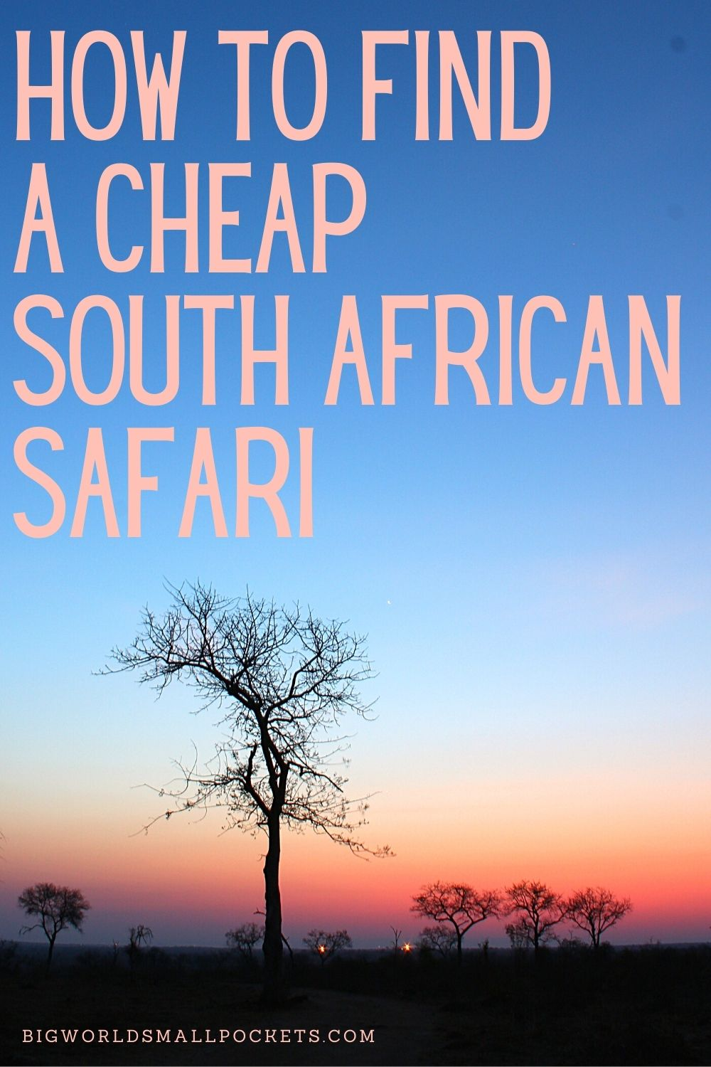 How To Book a Cheap South Africa Safari
