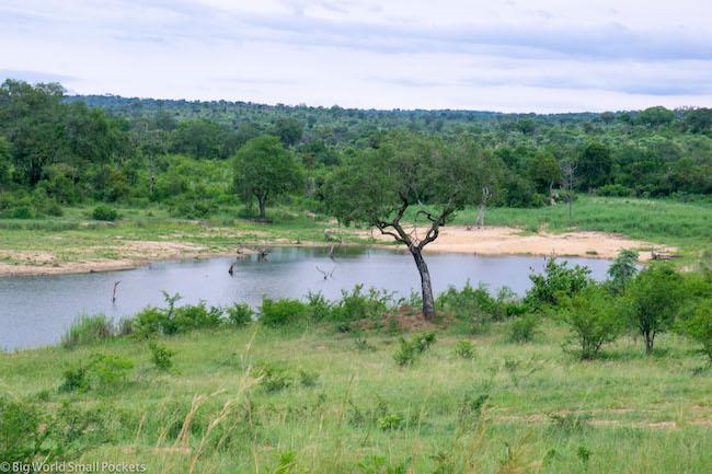 South Africa, Kruger, River Spot