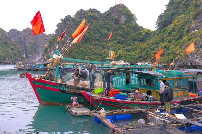 Vietnam, Cat Ba Island, Fisherman