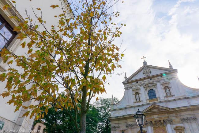 Poland, Krakow, Autumn Leaves