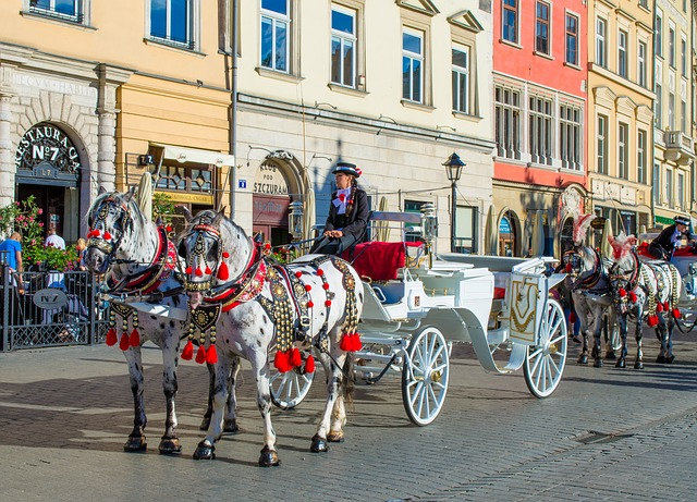 Poland. Krakow, Horse and Carriage