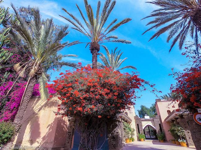 Morocco, Agadir, Gardens