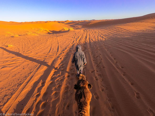 Africa, Morocco, Camel Ride