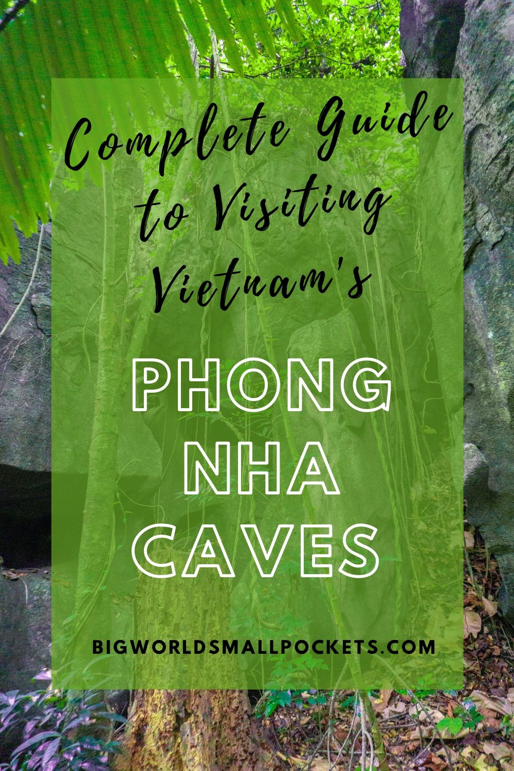 Complete Guide to Visiting Phong Nha Caves in Vietnam