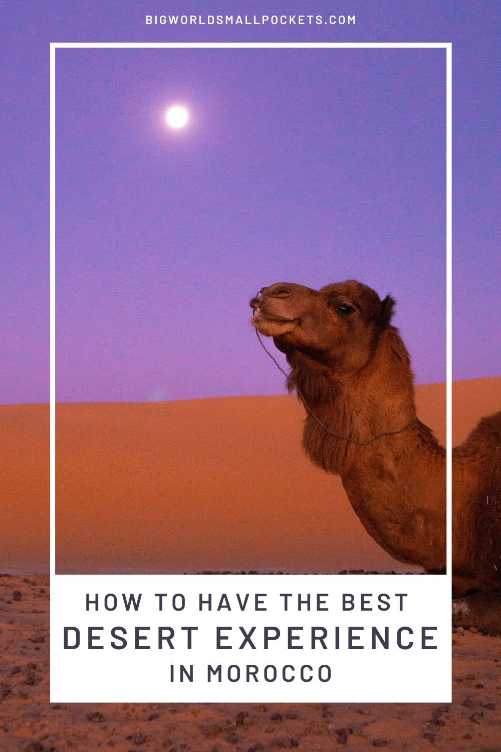 Crucial Tips For Getting The Best Desert Experience in Morocco