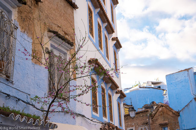 Morocco, Chefchaouen, Buildings