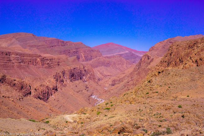 Morocco, Todra Gorge, Desert