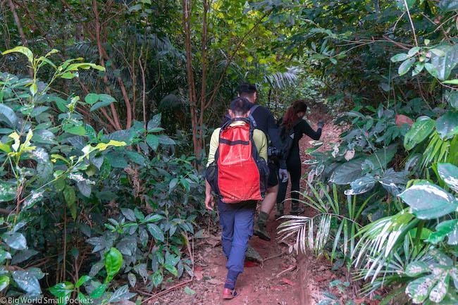 Vietnam, Phong Nha, Walk to Caves