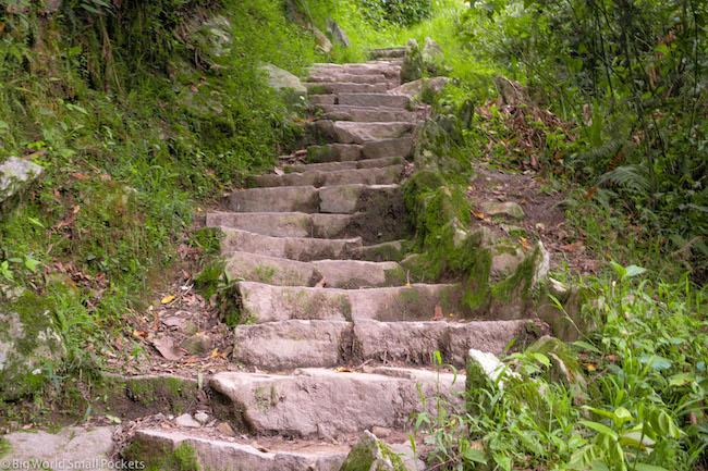 Peru, Machu Picchu, Steps Up