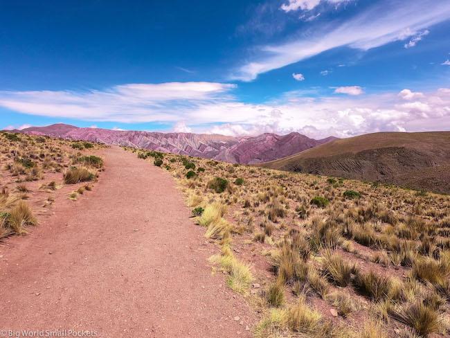 Argentina, Salta, Desert
