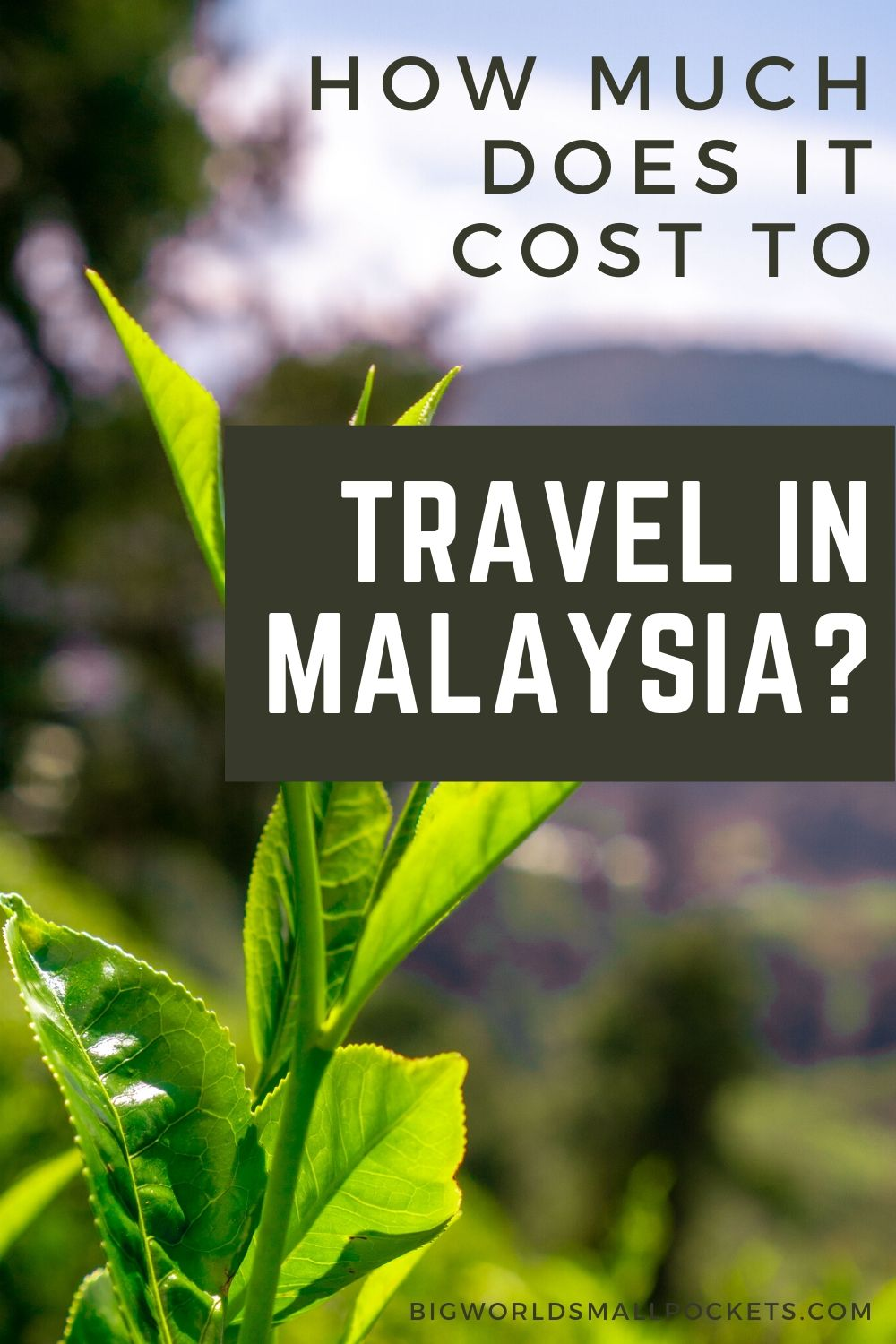 How Much Does it Cost to Travel Malaysia?