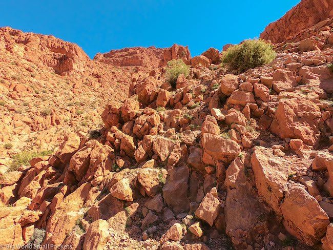 Morocco, Desert, Gorge