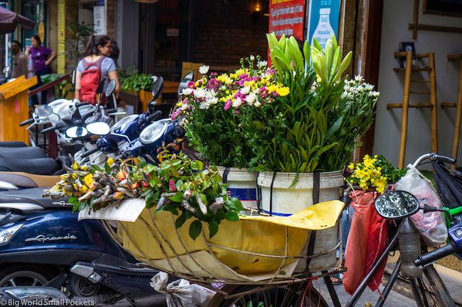Vietnam, Hanoi, Basket
