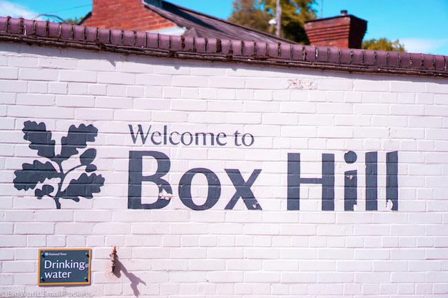 England, Box Hill, National Trust