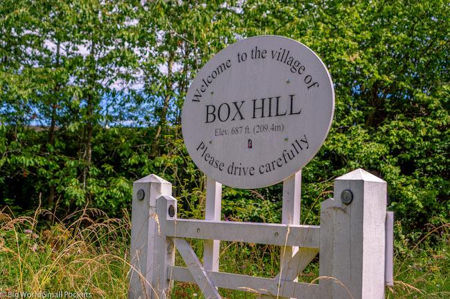 England, Box Hill, Village