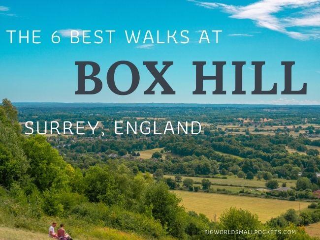 The 6 Best Box Hill Walks