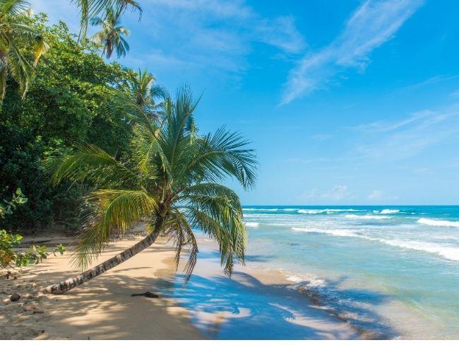Costa Rica, Rainforest, Beach