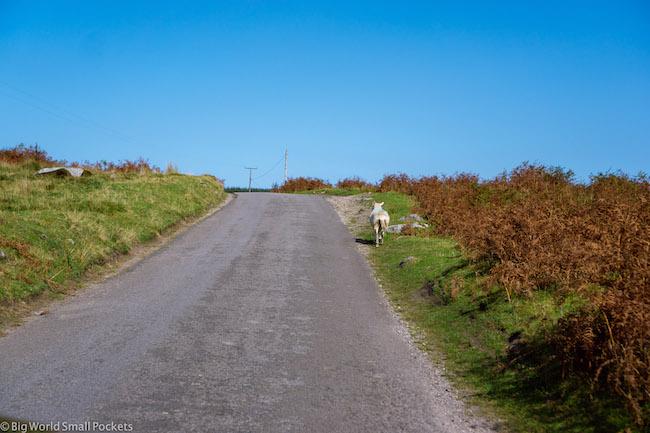 UK, Wales, Road
