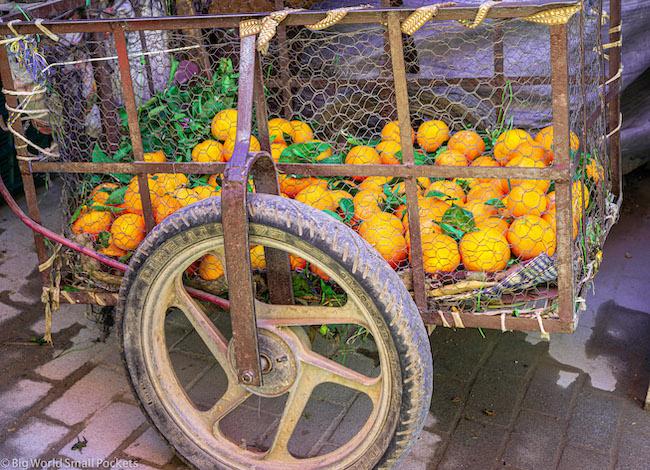 Africa, Morocco, Oragne Cart
