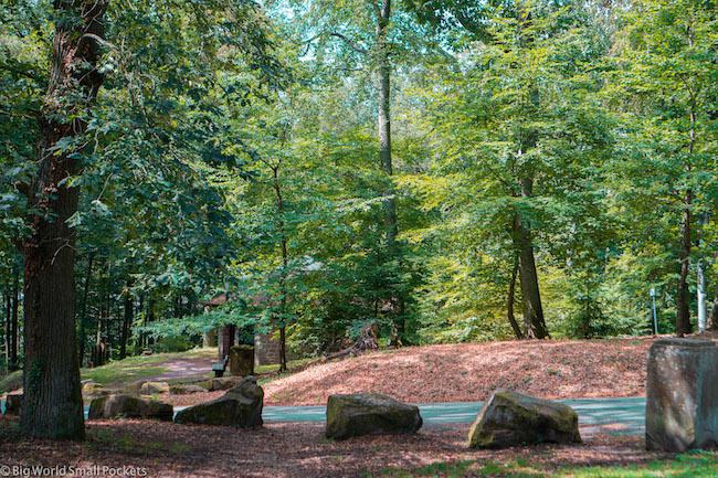 Germany, Heidelberg, Forest Road