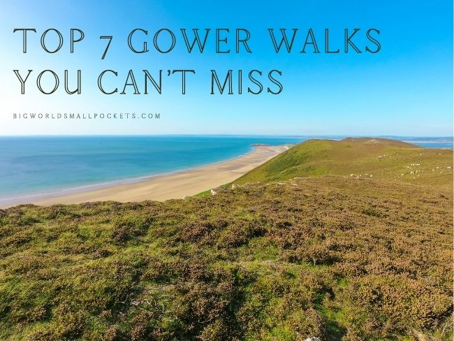 Top 7 Gower Walks You Can't Miss