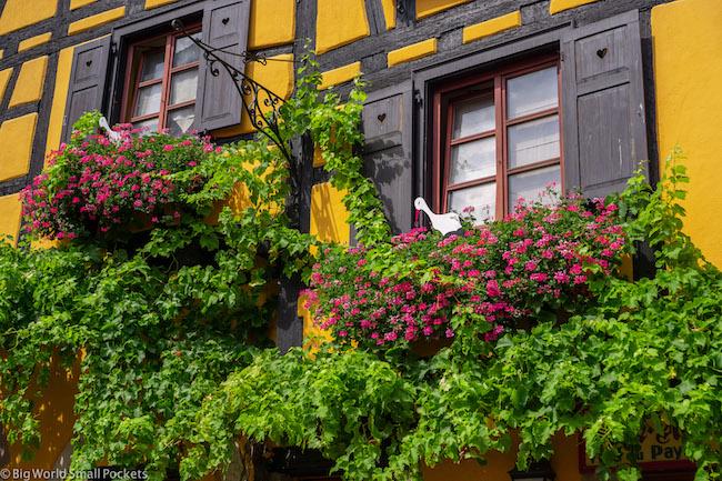 France, Alsace, Windows