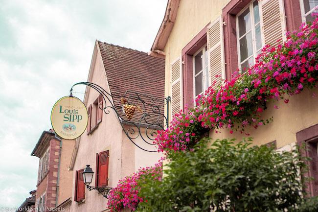 France, Alsace Wine Route, Louis Sipp