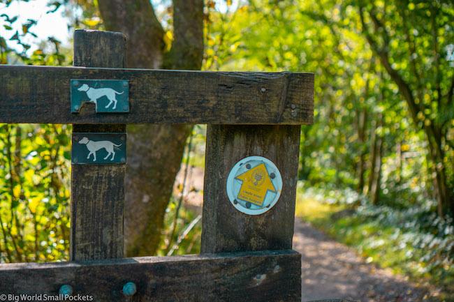 Wales, Brecon Beacons, Waterfall Walks