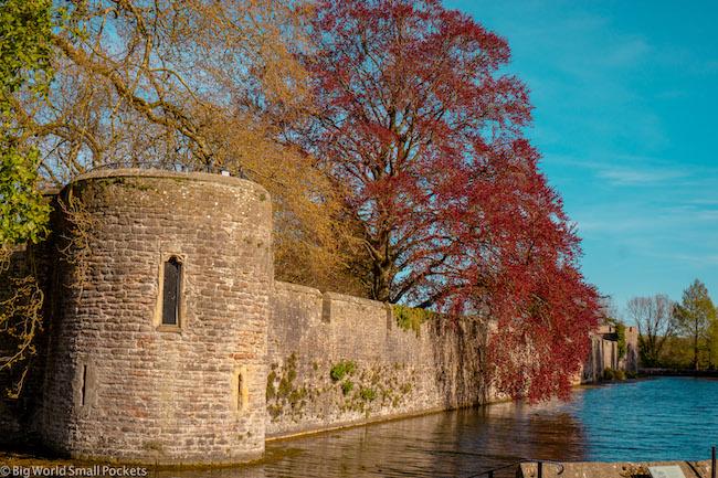England, Somerset, Wells Bishops Palace