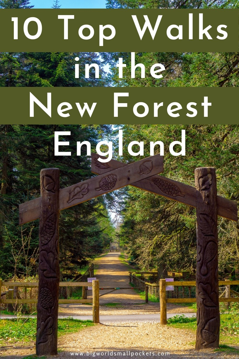 10 Best Walks in the New Forest, England
