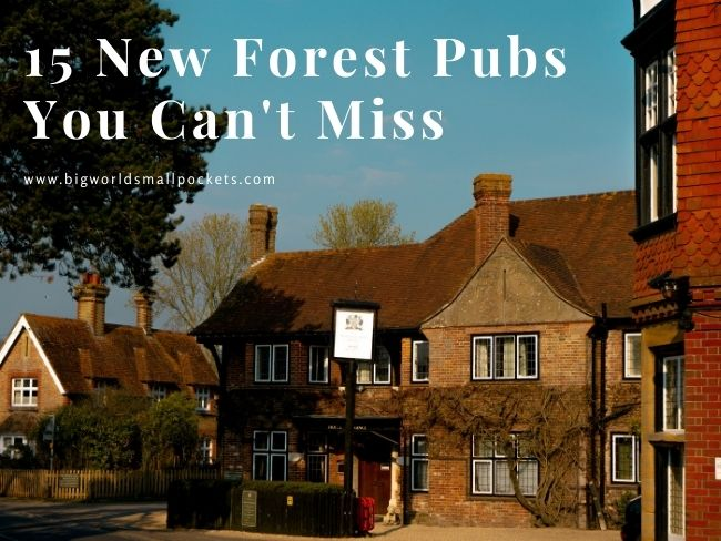 15 New Forest Pubs You Can't Miss