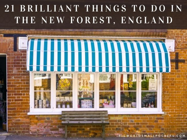 21 Brilliant Things to Do in the New Forest, England
