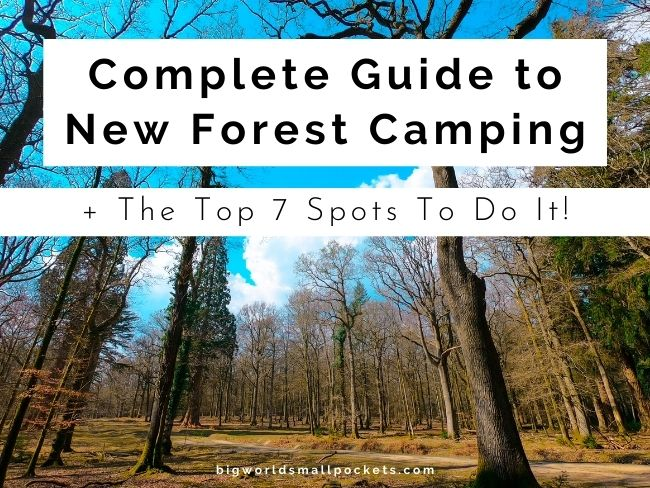 Complete Guide to New Forest Camping + Top 7 Spots