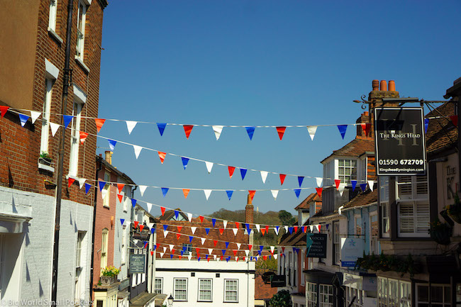 England, New Forest, Bunting