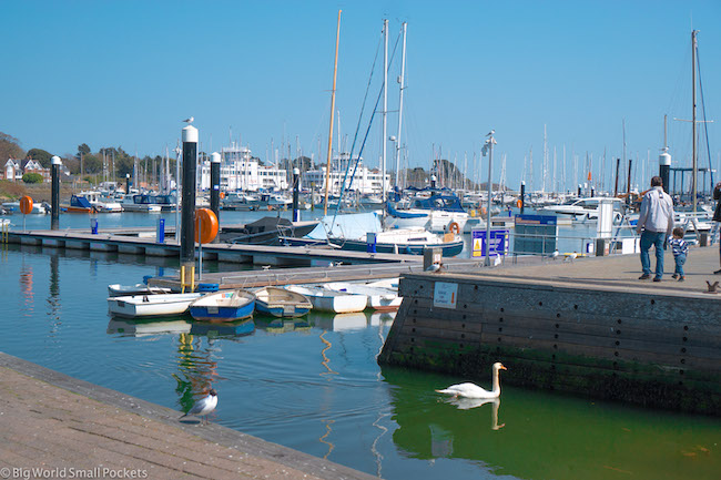 England, New Forest, Harbour