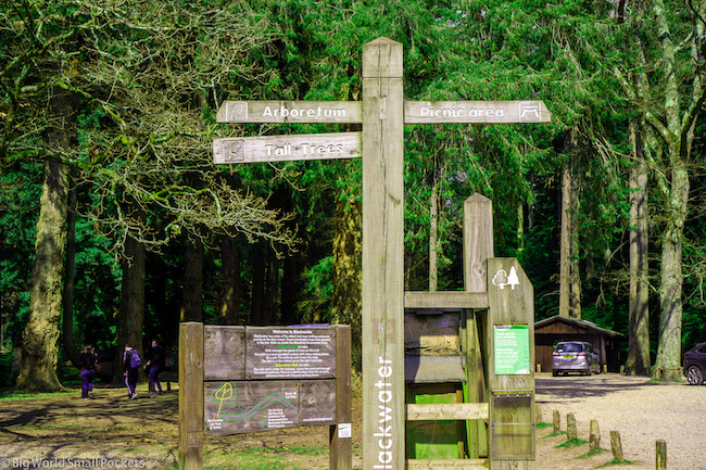 England, New Forest, Trail Sign