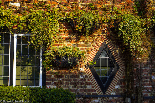 England, New Forest, Window