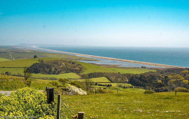 England, Dorset, Chesil Beach
